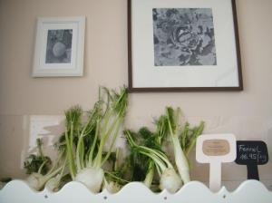 Fennel on shelves