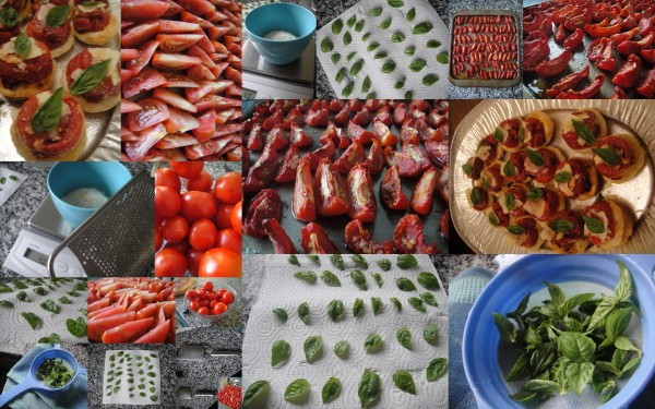 Collage of tomatoes, basil and tatins