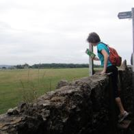Over the stile into the field