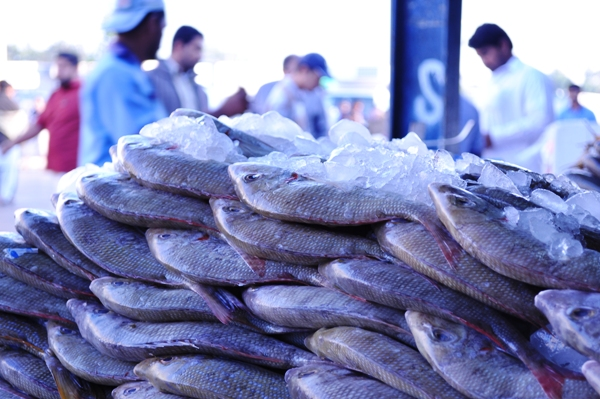The fish market, Deira