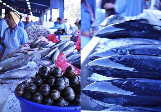 Omani lobsters and shining king fish
