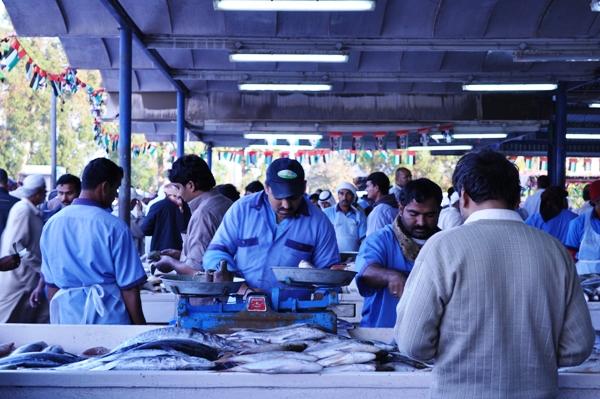 Deira fish market Dubai