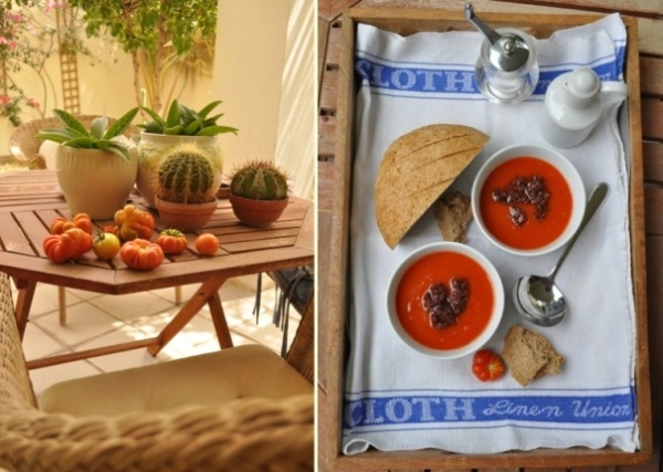 Tomatoes ripening and fresh tomato soup