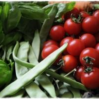 Organic UAE