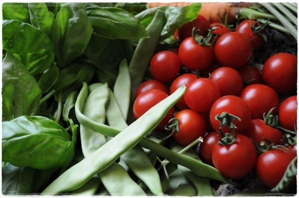 Farmers Market Dubai (3)
