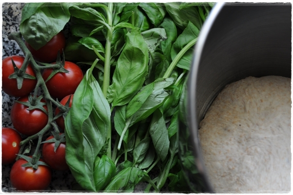 Dough with tomatoes and basil