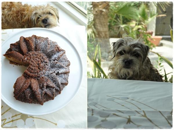 Hazel waiting for cake