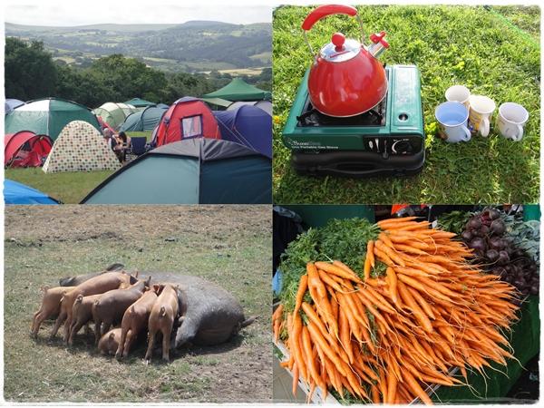 Chagstock camping pigs