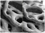 Fougasse – black andwhite