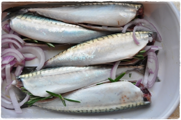 Mackerel stuffed with rosemary