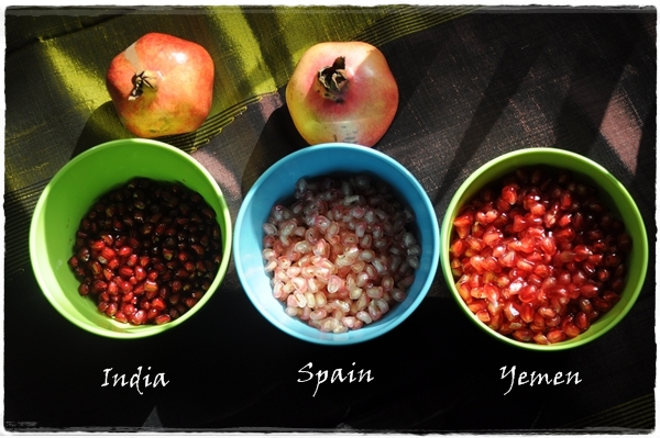 Three kinds of pomegranate seeds