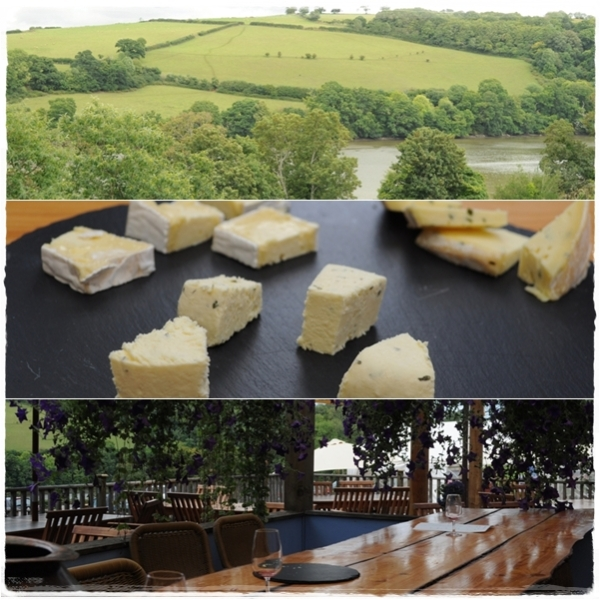 View from cafe, Sharpham cheese and tasting area