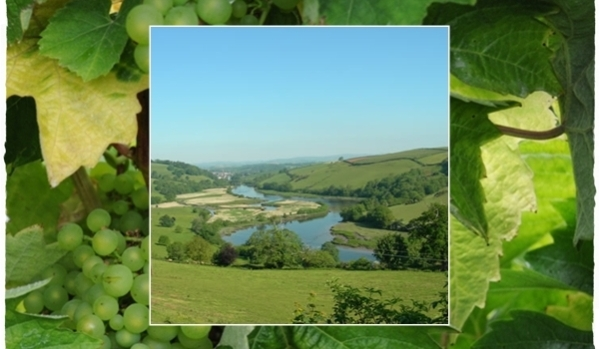 View going into Sharpham