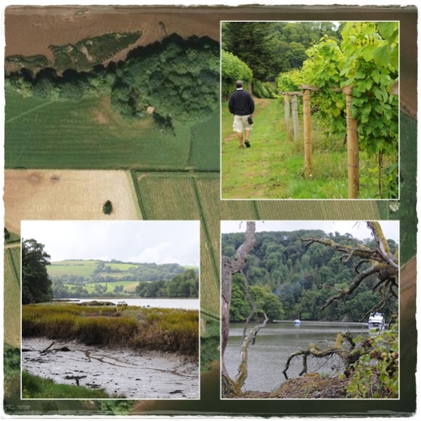 Sharpham trek and taste