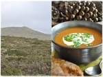 Goulash soup and BratTor