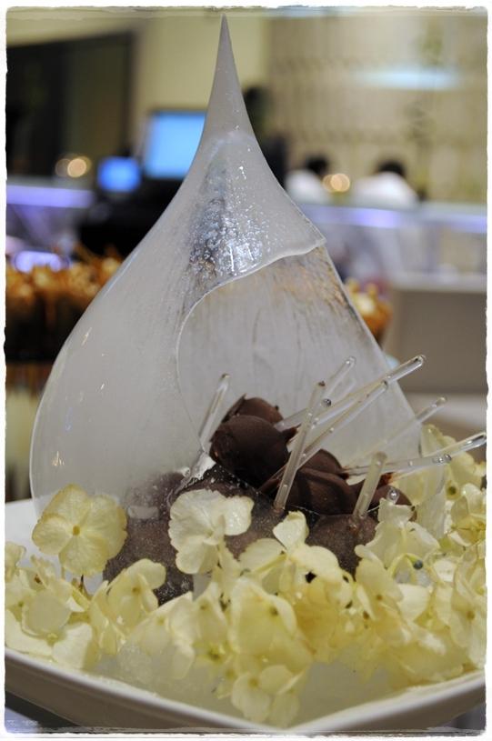 Chocolate ice pops