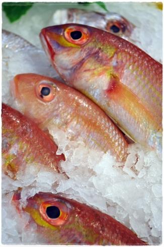 Fish at Lafayette Gourmet