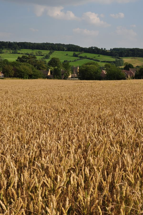 A view to Blockley