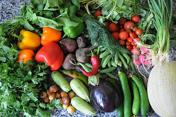 Organic veg from Greenheart