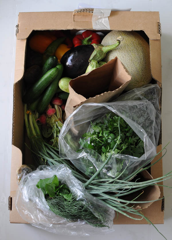 Greenheart veg box