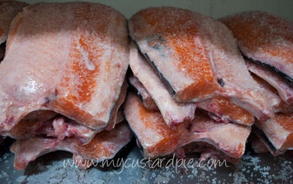 salmon after salting