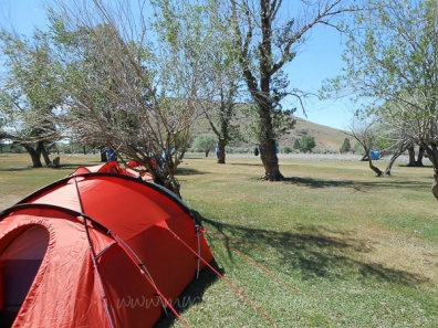 Camping in Mongolia