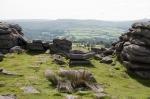 Dartmoor by My CustardPie-60-2