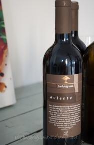 Sanpatrignano wine