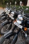 Staying in Jaipur – My CustardPie-16
