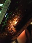 Wine tasting USA in Dubai – My CustardPie-14