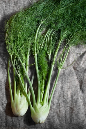Fennel from the farmers market - www.mycustardpie.com