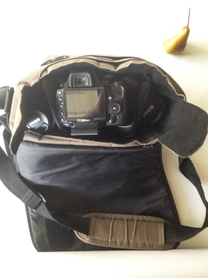 Camera Bag - www.mycustardpie.com