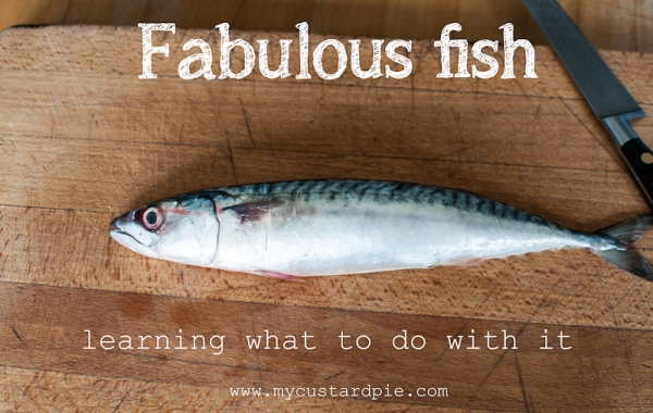 Learning what to do with fish - mycustardpie.com