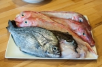 Learning what to do with fish – mycustardpie.com-3