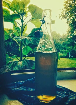 Elderflower Mint Cordial submitted by Ema from De Tout Coeur Limousin.