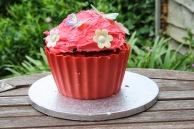giant cupcake that Caroline Makes.