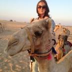 Diverse Dubai by MyCustardPie.com