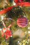 Merry Christmas – My CustardPie-6