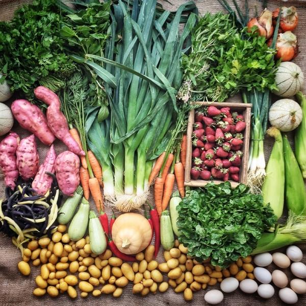 farmers market veg -mycustardpie.com