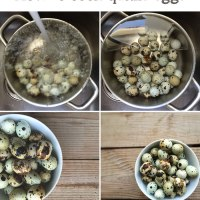How to cook quails eggs