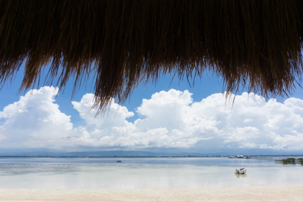 On Cebu in the Philippines - find out more on mycustardpie.com