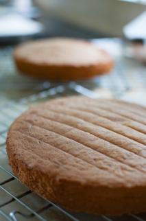 Classic Victoria sandwich cake on www.mycustardpie.com