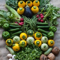 Eating the season - organic, local produce from the farmers