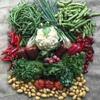 Produce from the Farmers Market in Dubai