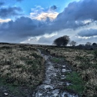 Walking up an appetite over Dartmoor - more about December food experiences on mycustardpie.com