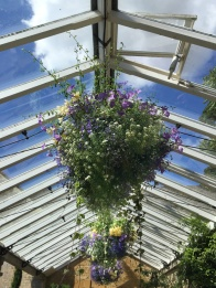 Blue sky through a conservatory roof. Summer days in the UK on mycustardpie.com