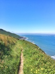 Walking the South West coast path in Devon. Summer days in the UK on mycustardpie.com