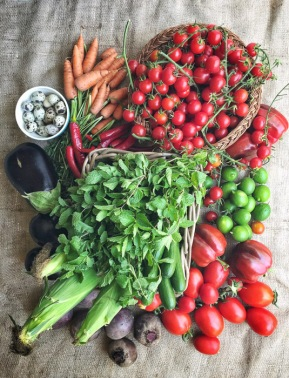 My haul from the farm on mycustardpie.com