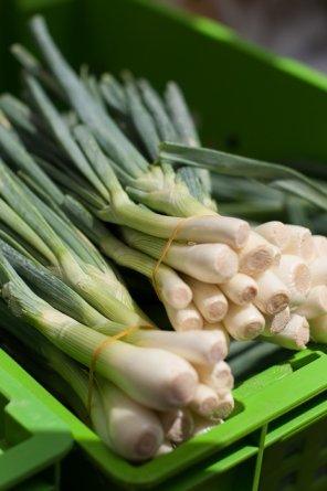 Spring onions at the farmers market - mycustardpie.com
