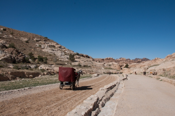 Horse and carriage into Petra. Visit Jordan on a family holiday - mycustardpie.com